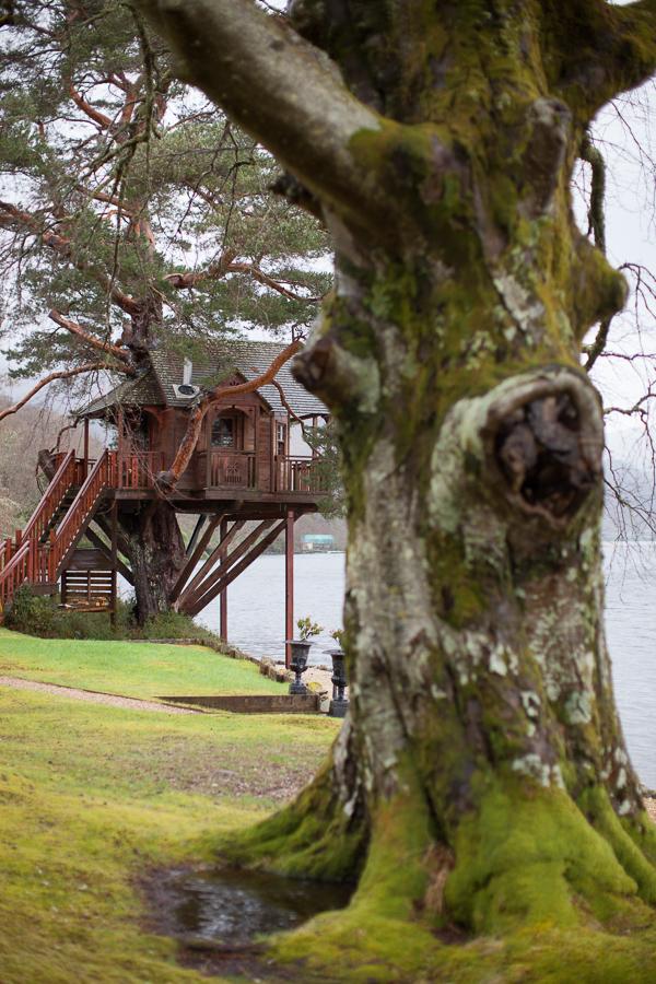 tree house wedding venue