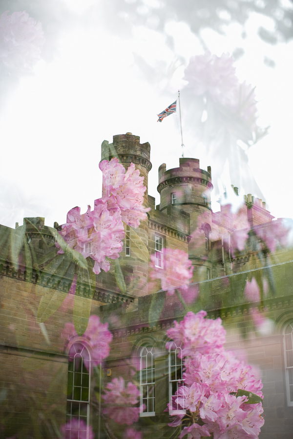 collage of oxenford castle and flowers fotogenic of scotland