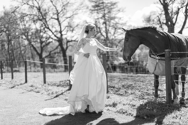 bride touching a horse