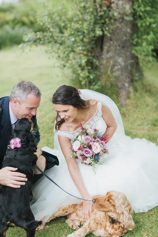 bride and groom with dogs at pet friendly venue