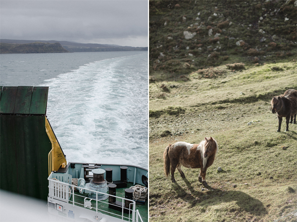 ferry to isle of harris and shetland ponnies