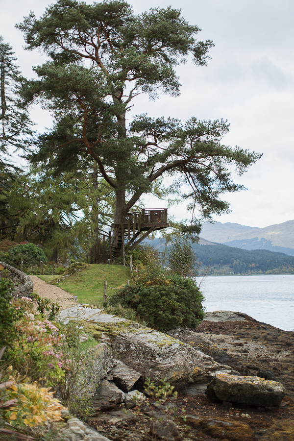 tree with viewing point suspended over scottish loch