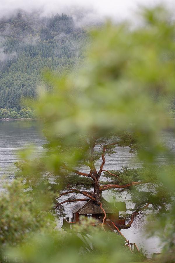 samll wedding in the tree house on loch goil